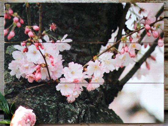 Bloemenfoto op hout